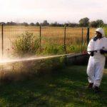 Disinfestazione professioanle zanzare